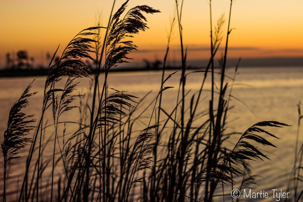 Sunrise Across the Pamlico Sound