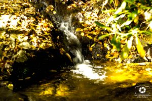 falls-creek-1